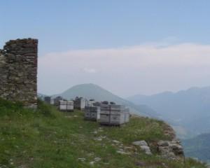 ruches.a.1700.m.d_altitude